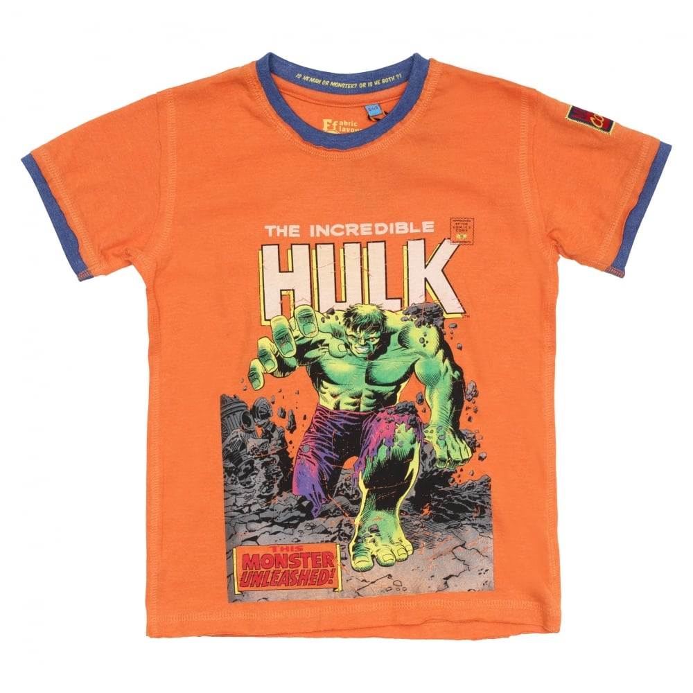 c2623115b01 The Incredible Hulk Crew Neck T-Shirt | Fussy Nation
